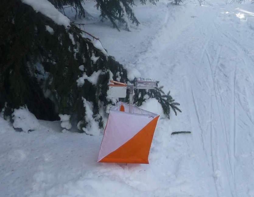 Gerd holt Gold beim Ski-OL (Lang) in Schmiedefeld